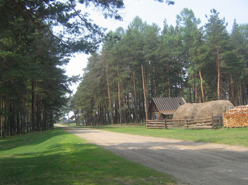 road, forest, log house with huge haystacks and woodpile adjacent